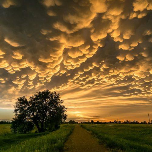 nubes-mammatus_f2491153_800x800